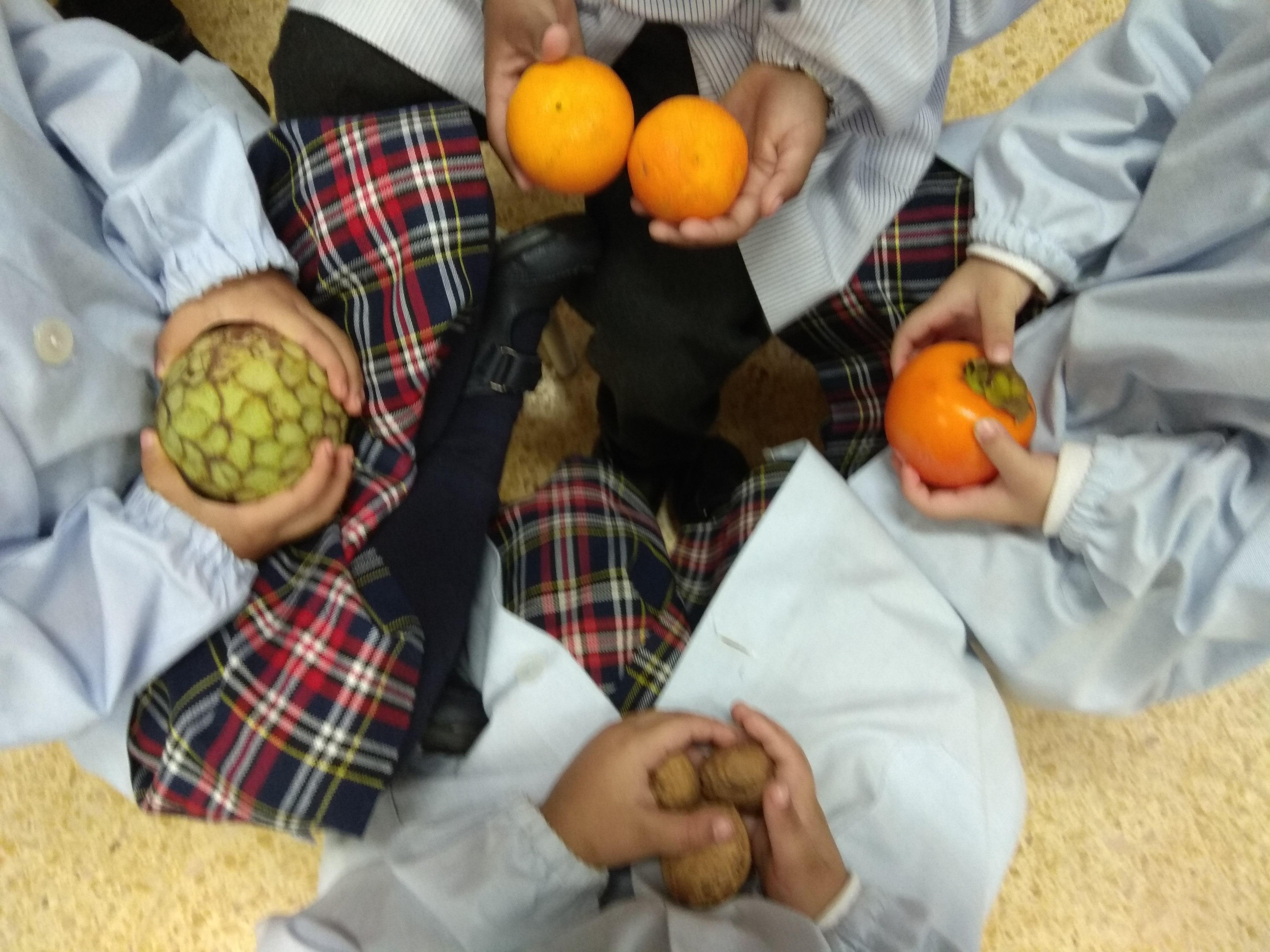 Educació Infantil. Hospitalet. Sant Josep Obrer. Fruits de la tardor (16)
