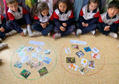 Educació Infantil Sant Josep Obrer Hospitalet dracs (26)