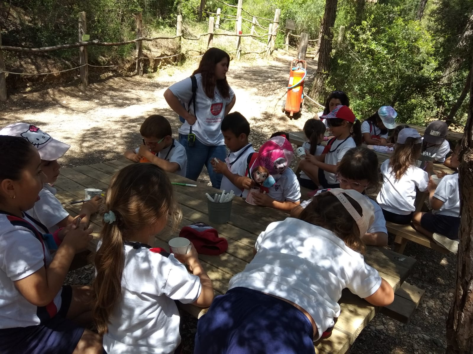 Educació Infantil. Sant Josep Obrer. Hospitalet. Aventura Park P5 (13)